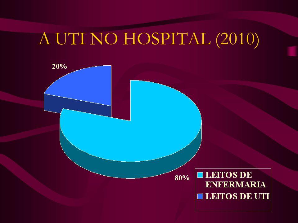 A UTI NO HOSPITAL (2010)