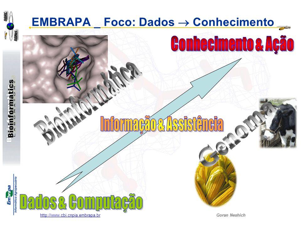 Goran Neshich http://www.cbi.cnpia.embrapa.br O Objetivo final: complementar o caminho dos projetos Genoma… BD dos pequenos reagentes Impressão Digital (Fingerprint ) Estruturas nos arquivos locais Impressão Digital (Fingerprint) Sequências do genoma completo Modelagem por homologia Interações: Proteínas / ligantes (Matching DB) Estudos dos mutantes e sua dinâmica Docking Proteína-informação 2-D do seu sítio ativo (para comparação) Casamento entre mapas 2D do contorno das superfícies Ligando-informação2-D da sua superfície (para comparação)