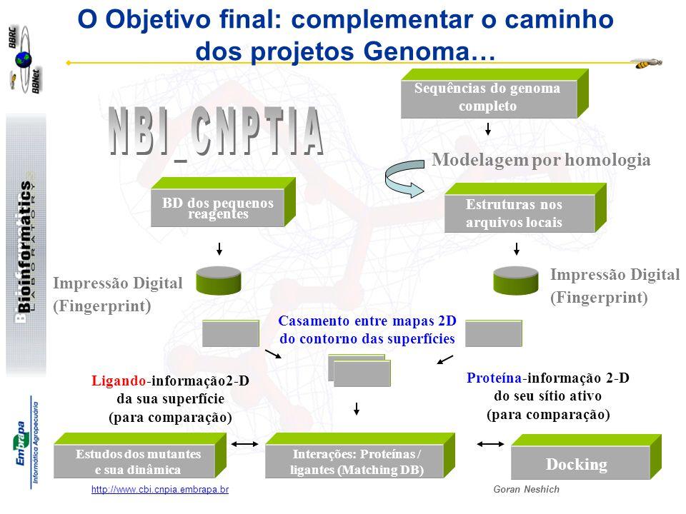 Goran Neshich http://www.cbi.cnpia.embrapa.br O Objetivo final: complementar o caminho dos projetos Genoma… BD dos pequenos reagentes Impressão Digita