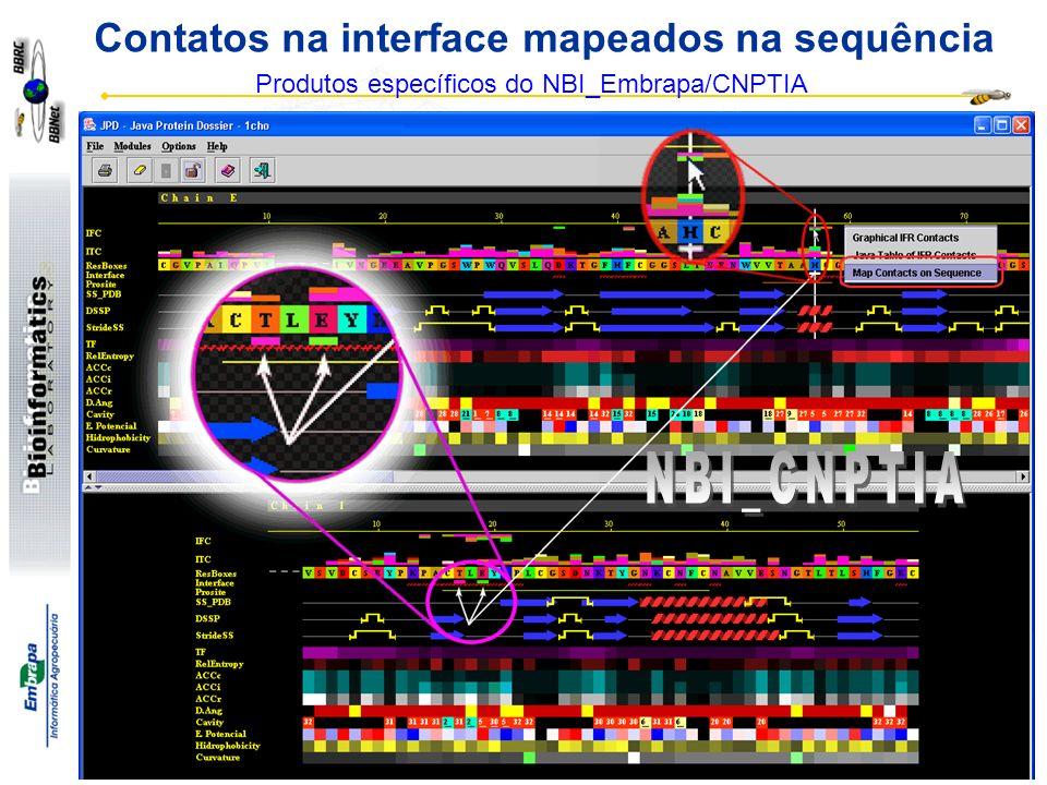 Goran Neshich http://www.cbi.cnpia.embrapa.br Contatos na interface mapeados na sequência Produtos específicos do NBI_Embrapa/CNPTIA