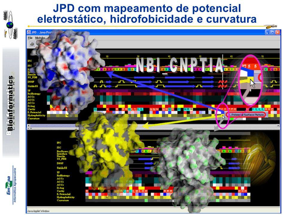 Goran Neshich http://www.cbi.cnpia.embrapa.br JPD com mapeamento de potencial eletrostático, hidrofobicidade e curvatura