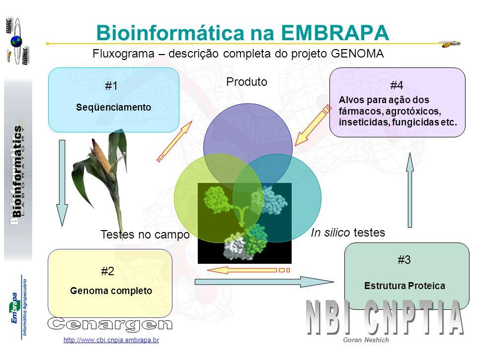 Goran Neshich http://www.cbi.cnpia.embrapa.br Bioinformática na EMBRAPA Seqüenciamento Genoma completo Estrutura Proteica Fluxograma – descrição compl