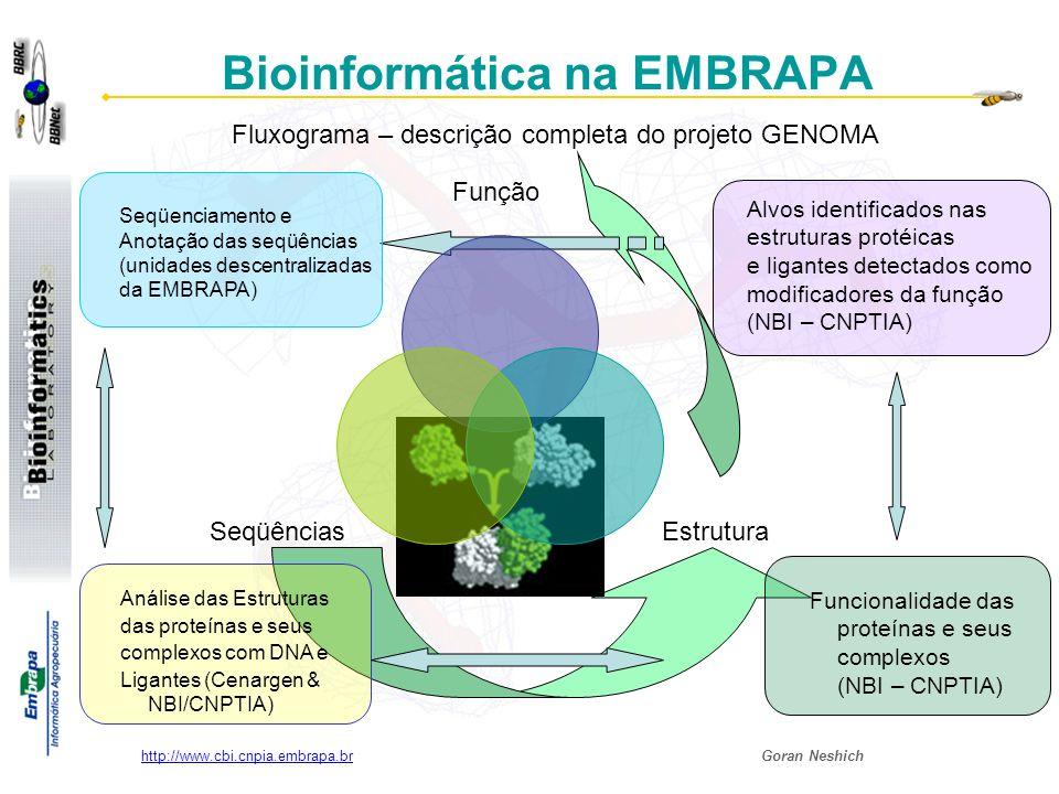 Goran Neshich http://www.cbi.cnpia.embrapa.br Bioinformática na EMBRAPA Seqüenciamento e Anotação das seqüências (unidades descentralizadas da EMBRAPA