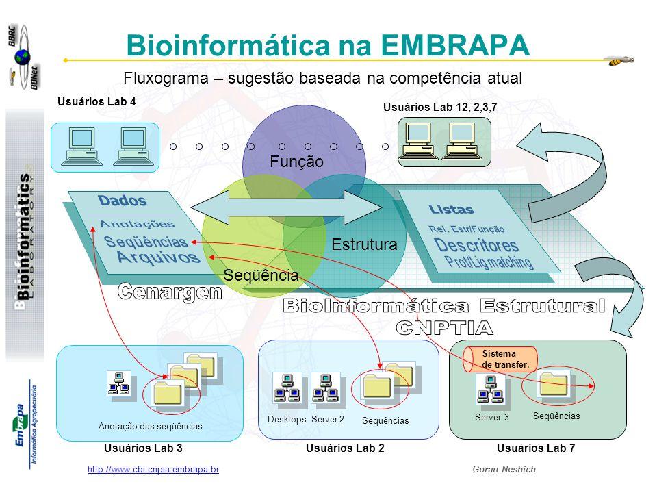 Goran Neshich http://www.cbi.cnpia.embrapa.br Bioinformática na EMBRAPA Desktops Server 2 Anotação das seqüências Seqüências Server 3 Usuários Lab 12, 2,3,7 Sistema de transfer.