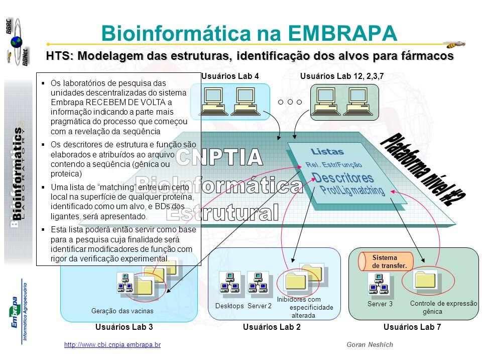 Goran Neshich http://www.cbi.cnpia.embrapa.br Usar as ferramentas existentes (Java Protein Dossier de STING Millennium Suite) para gerar descritores de estrutura e função de proteínas; Seleção de alvos para desenvolvimento de drogas a partir de seqüências genômicas geradas por grupos participantes e/ou outros, adaptando para este processo as ferramentas existentes (Modeller e/ou Dragon) para modelagem da estrutura proteica automática Objetivos específicos do grupo da BioInformática Estrutural EMBRAPA/CNPTIA: Aplicações de BioInformática com alta demanda por CPUs em era pós-genoma