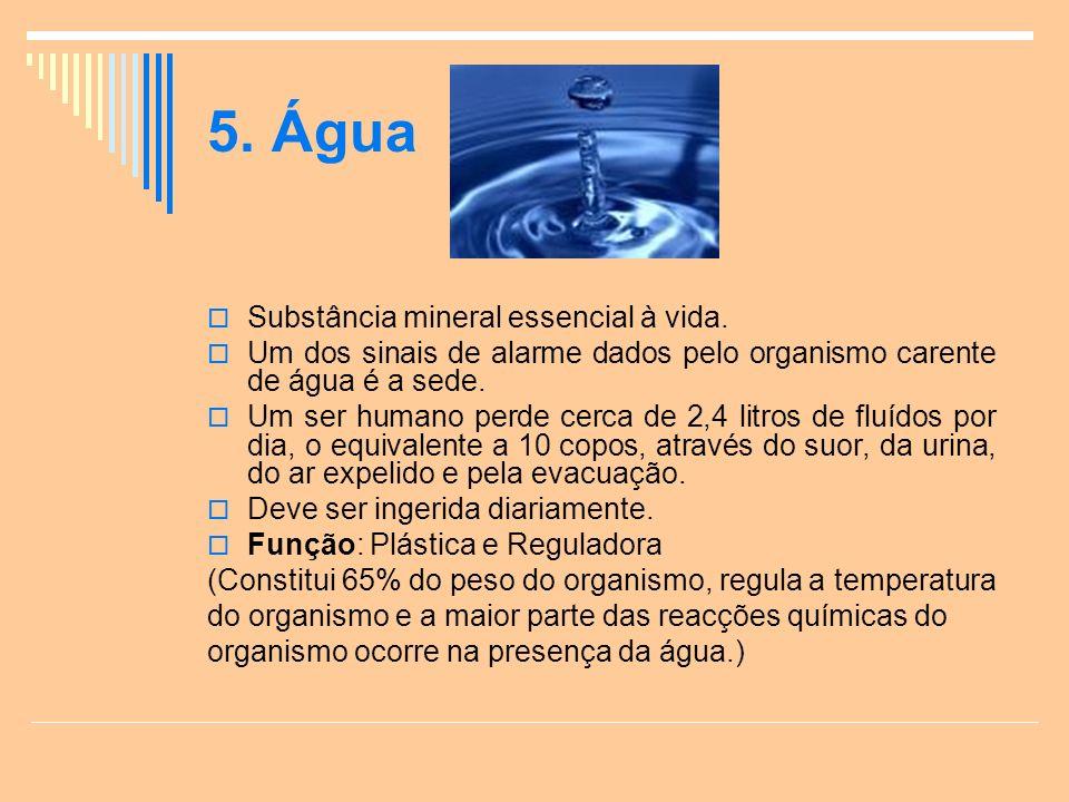 5.Água Substância mineral essencial à vida.