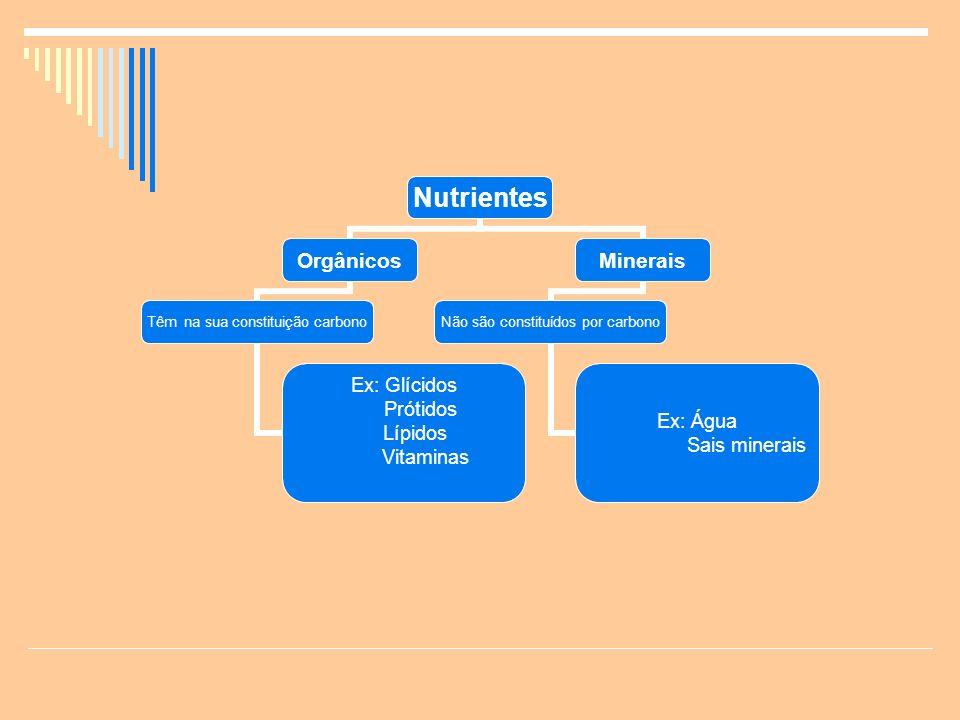 Nutrientes Orgânicos Têm na sua constituição carbono Ex: Glícidos Prótidos Lípidos Vitaminas Minerais Não são constituídos por carbono Ex: Água Sais minerais