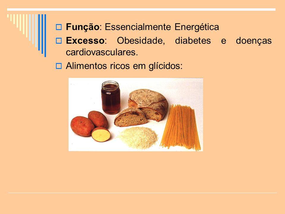 Função: Essencialmente Energética Excesso: Obesidade, diabetes e doenças cardiovasculares.