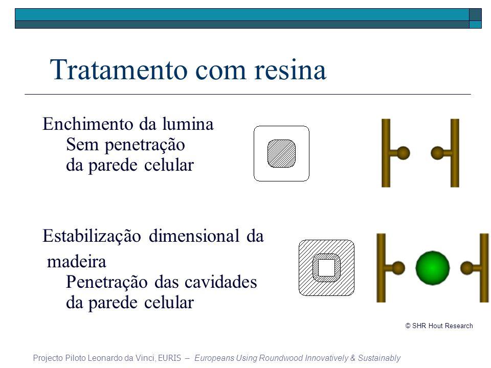 Tratamento com resina Enchimento da lumina Sem penetração da parede celular Estabilização dimensional da madeira Penetração das cavidades da parede celular Projecto Piloto Leonardo da Vinci, EURIS – Europeans Using Roundwood Innovatively & Sustainably © SHR Hout Research