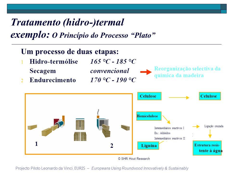 Um processo de duas etapas: 1 Hidro-termólise165 °C - 185 °C Secagemconvencional 2 Endurecimento170 °C - 190 °C 1 2 Selectively reorganizing the Reorganização selectiva da chemistry of wood química da madeira Tratamento (hidro-)termal exemplo: O Princípio do Processo Plato Projecto Piloto Leonardo da Vinci, EURIS – Europeans Using Roundwood Innovatively & Sustainably © SHR Hout Research Ligação cruzada Intermediários reactivos I Ex.: Aldeídos Intermediários reactivos II