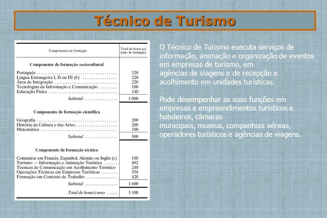 Técnico de Turismo O Técnico de Turismo executa serviços de informação, animação e organização de eventos em empresas de turismo, em agências de viagens e de recepção e acolhimento em unidades turísticas.