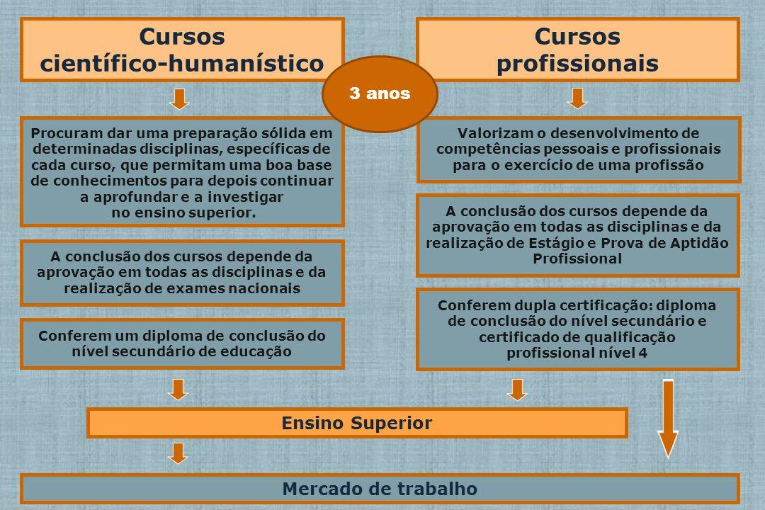 Cursos científico-humanístico Cursos profissionais Ensino Superior Mercado de trabalho Valorizam o desenvolvimento de competências pessoais e profissi