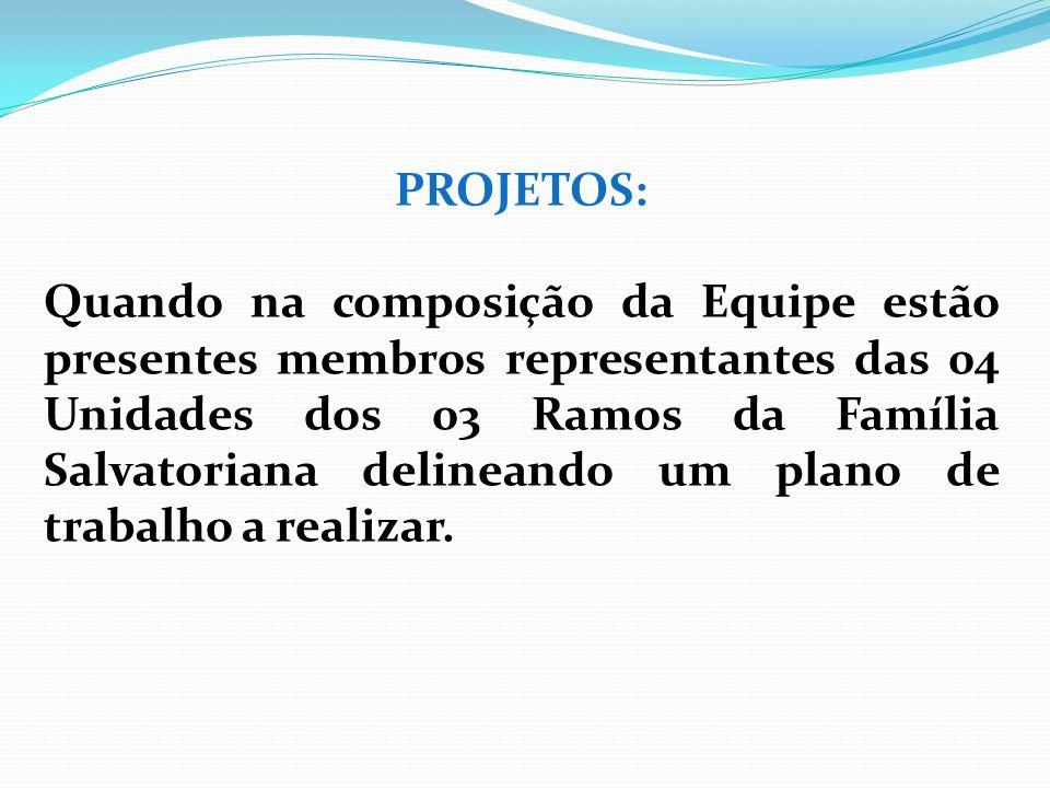 PROJETOS: Quando na composição da Equipe estão presentes membros representantes das 04 Unidades dos 03 Ramos da Família Salvatoriana delineando um pla