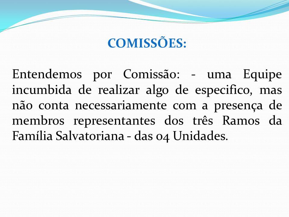 COMISSÕES: Entendemos por Comissão: - uma Equipe incumbida de realizar algo de especifico, mas não conta necessariamente com a presença de membros rep