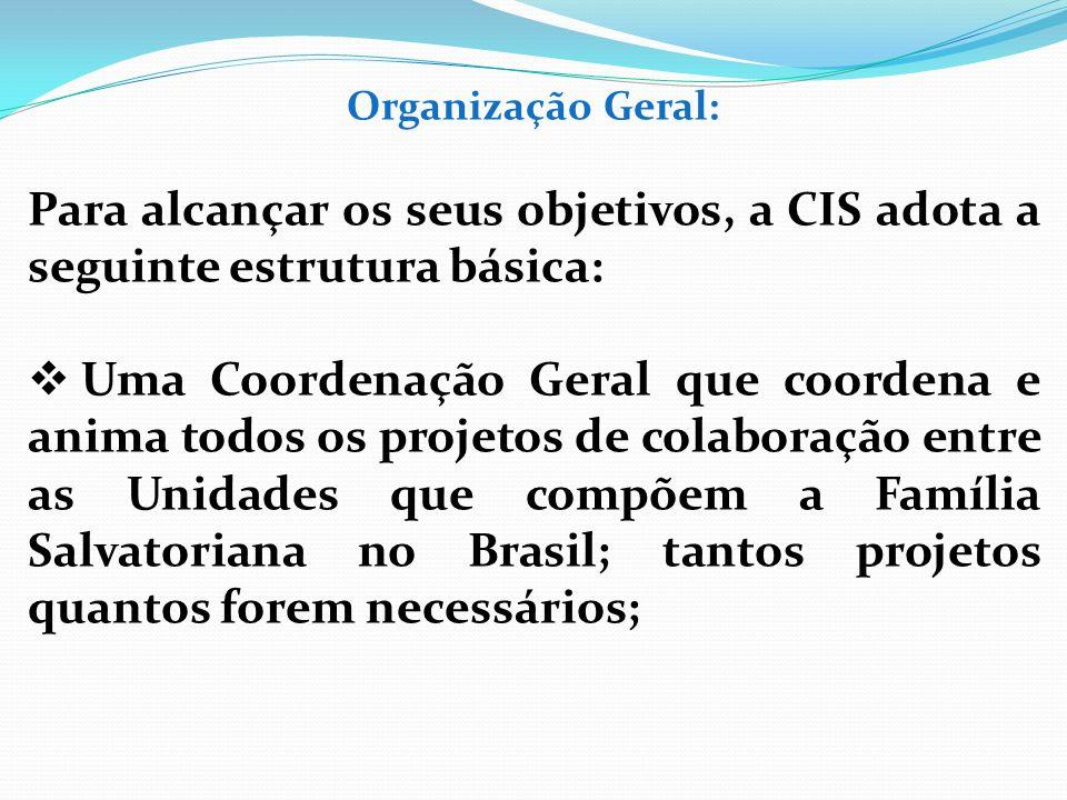 Organização Geral: Para alcançar os seus objetivos, a CIS adota a seguinte estrutura básica: Uma Coordenação Geral que coordena e anima todos os proje
