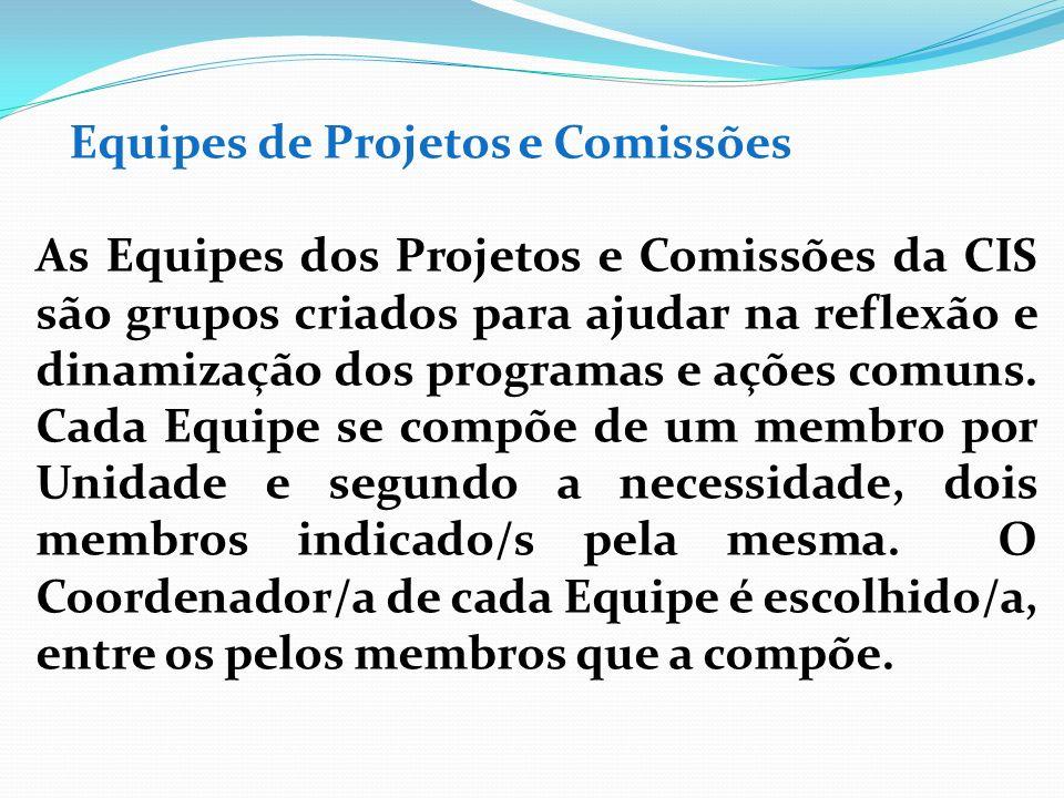 Equipes de Projetos e Comissões As Equipes dos Projetos e Comissões da CIS são grupos criados para ajudar na reflexão e dinamização dos programas e aç