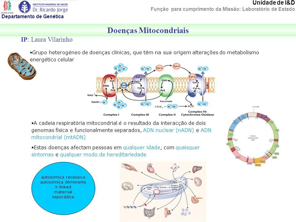 Grupo heterogéneo de doenças clínicas, que têm na sua origem alterações do metabolismo energético celular autosómica recessiva autosómica dominante X-