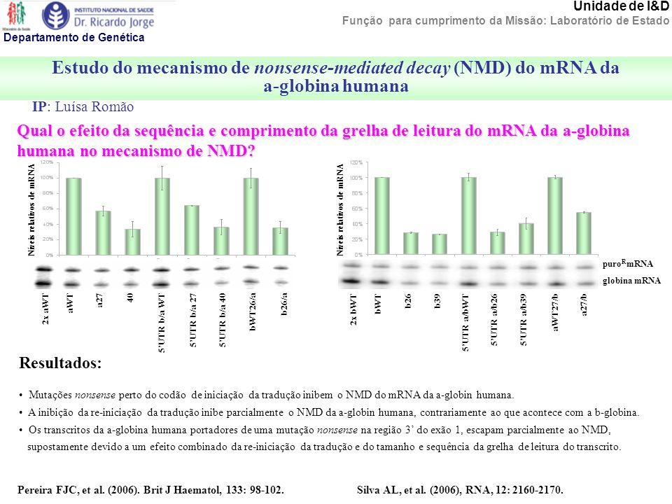 Estudo do mecanismo de nonsense-mediated decay (NMD) do mRNA da a-globina humana Departamento de Genética Unidade de I&D Função para cumprimento da Mi