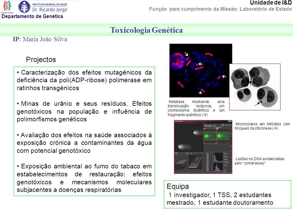 Departamento de Genética Toxicologia Genética Unidade de I&D Função para cumprimento da Missão: Laboratório de Estado IP: Maria João Silva Projectos M