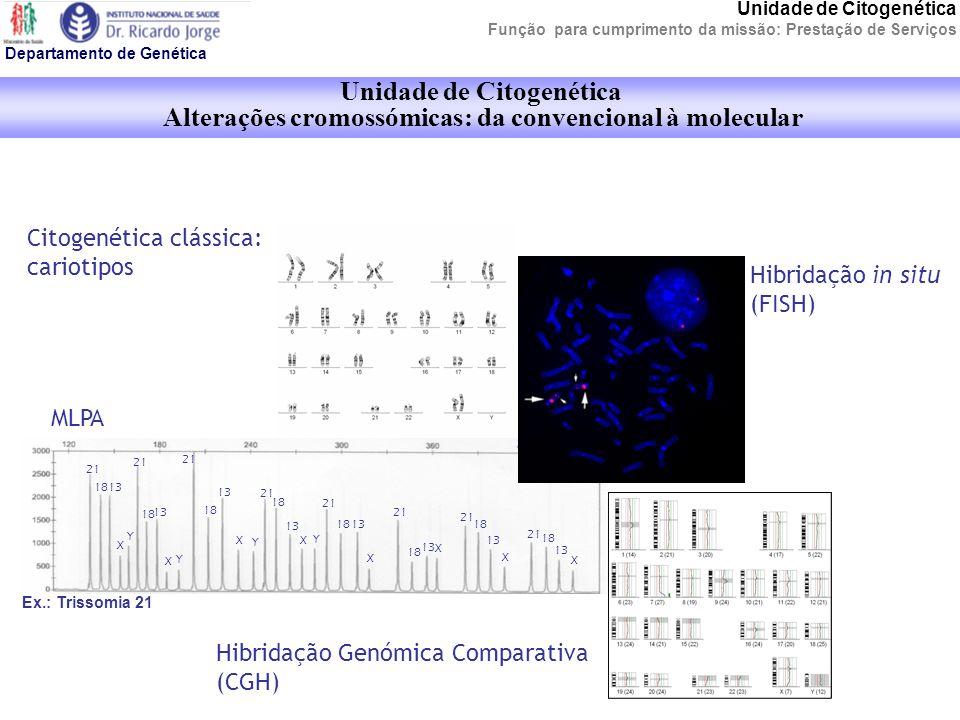 Unidade de Citogenética Oferta de serviços Departamento de Genética Estudo cromossómico na população e no feto (DPN cromossómico); Estudo cromossómico de neoplasias (tumores sólidos e doenças hematológicas malignas); Análise molecular rápida de aneuploidias permite uma tomada de decisão terapêutica mais precoce; Estudos por hibridação in situ (FISH) contribuem para uma caracterização mais precisa em muitos casos de anomalia citogenética constitucional e oncológica.