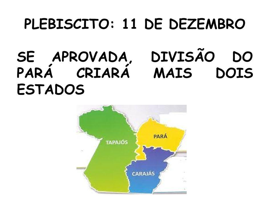 PLEBISCITO: 11 DE DEZEMBRO SE APROVADA, DIVISÃO DO PARÁ CRIARÁ MAIS DOIS ESTADOS