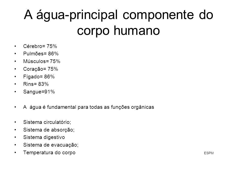 A água-principal componente do corpo humano Cérebro= 75% Pulmões= 86% Músculos= 75% Coração= 75% Fígado= 86% Rins= 83% Sangue=91% A água é fundamental
