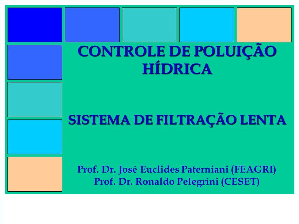 CONTROLE DE POLUIÇÃO HÍDRICA SISTEMA DE FILTRAÇÃO LENTA CONTROLE DE POLUIÇÃO HÍDRICA SISTEMA DE FILTRAÇÃO LENTA Prof. Dr. José Euclides Paterniani (FE