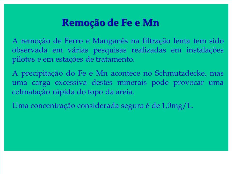 Remoção de Fe e Mn A remoção de Ferro e Manganês na filtração lenta tem sido observada em várias pesquisas realizadas em instalações pilotos e em esta