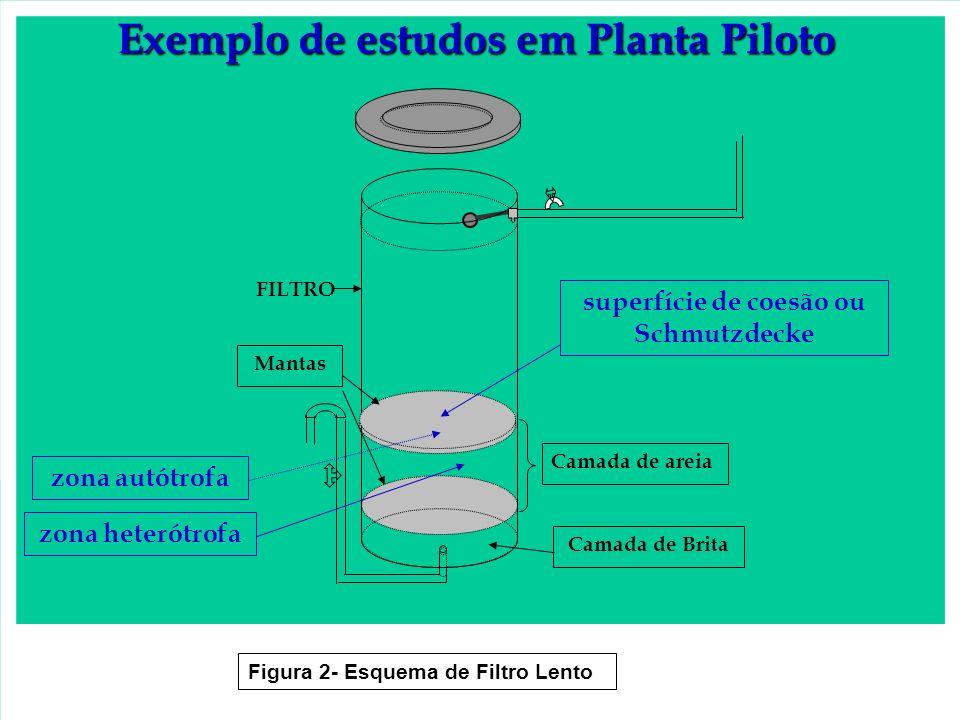 Camada de Brita Mantas Camada de areia FILTRO Figura 2- Esquema de Filtro Lento Exemplo de estudos em Planta Piloto superfície de coesão ou Schmutzdec