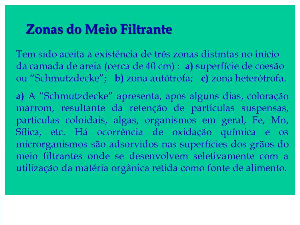 FIGURA 4 -Filtro lento (bairro Ana Benta – Capão Bonito SP) ETA construída em 1992, ocupa uma área de 66 m² com capacidade de tratar 1,5 L/s de água.