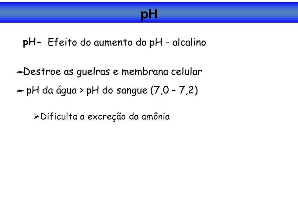 pH- Destroe as guelras e membrana celular pH da água > pH do sangue (7,0 – 7,2) Dificulta a excreção da amônia Efeito do aumento do pH - alcalino pH