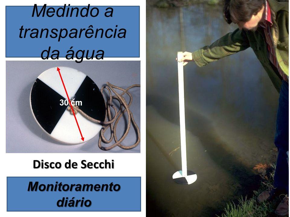 30 cm Medindo a transparência da água Disco de Secchi Monitoramento diário