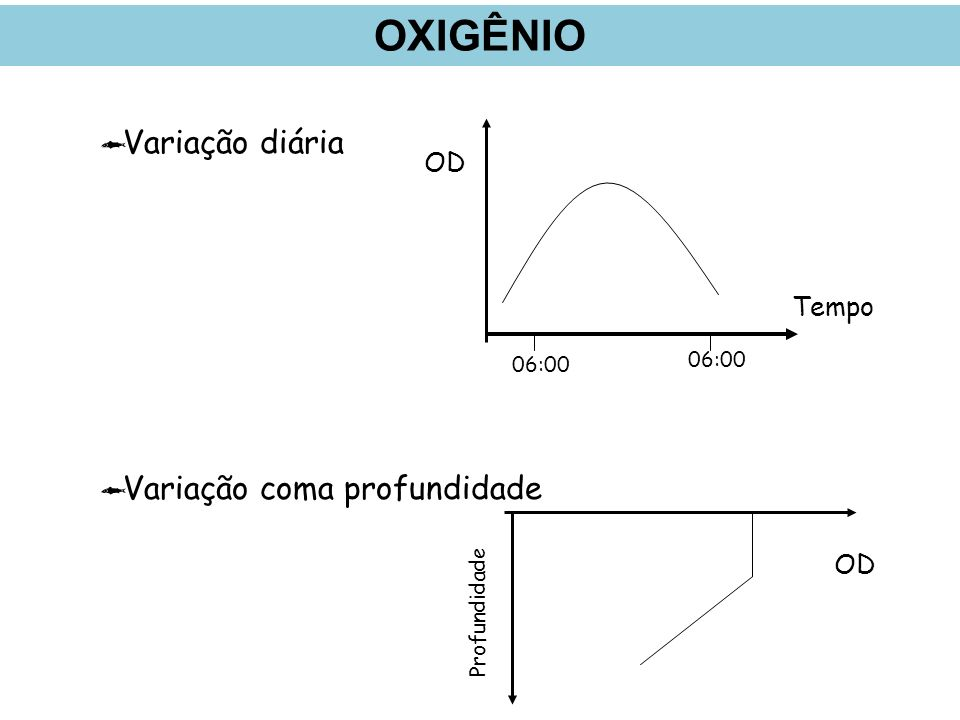 Variação diária Variação coma profundidade Profundidade OD 06:00 Tempo OD 06:00 OXIGÊNIO
