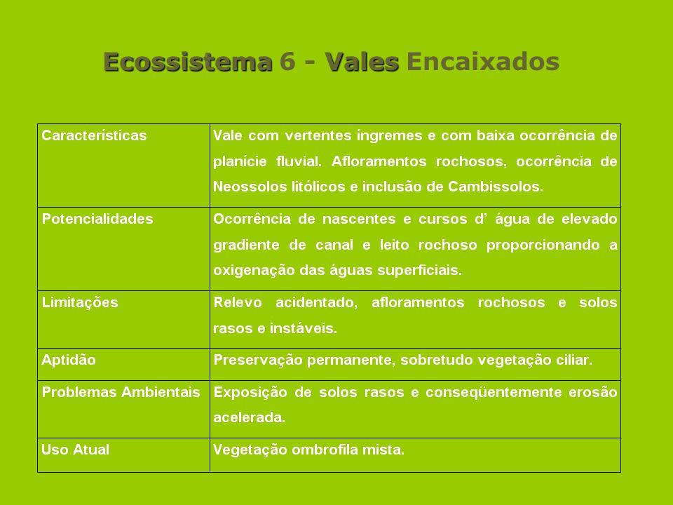 EcossistemaVales Ecossistema 6 - Vales Encaixados