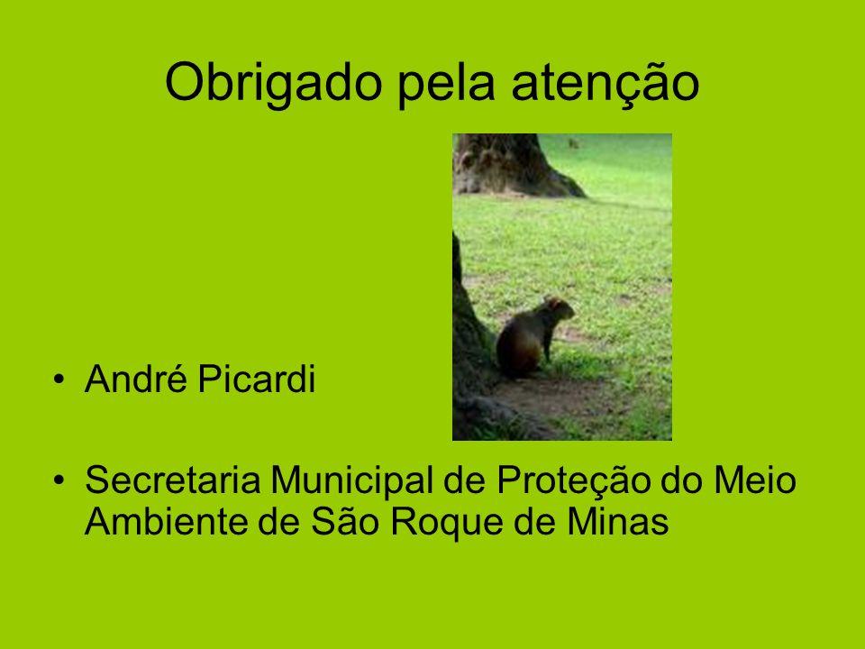 Obrigado pela atenção André Picardi Secretaria Municipal de Proteção do Meio Ambiente de São Roque de Minas