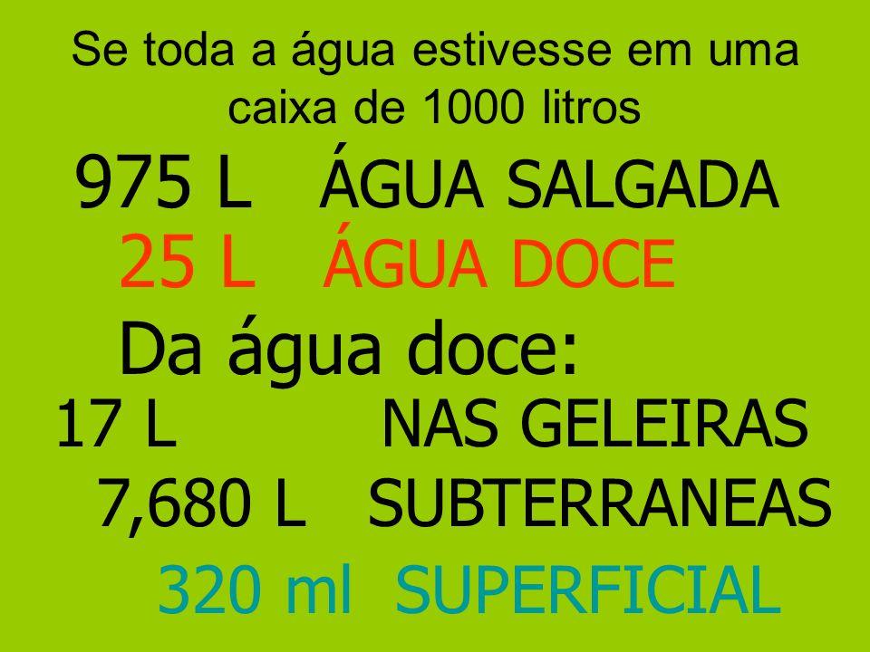 Se toda a água estivesse em uma caixa de 1000 litros 975 L ÁGUA SALGADA 25 L ÁGUA DOCE Da água doce: 17 L NAS GELEIRAS 7,680 L SUBTERRANEAS 320 ml SUPERFICIAL