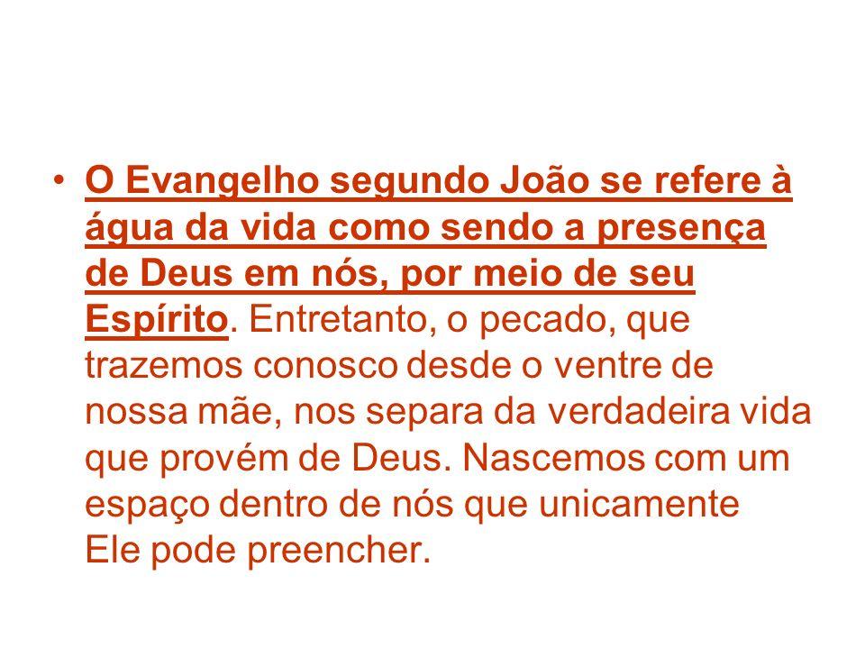 O Evangelho segundo João se refere à água da vida como sendo a presença de Deus em nós, por meio de seu Espírito. Entretanto, o pecado, que trazemos c