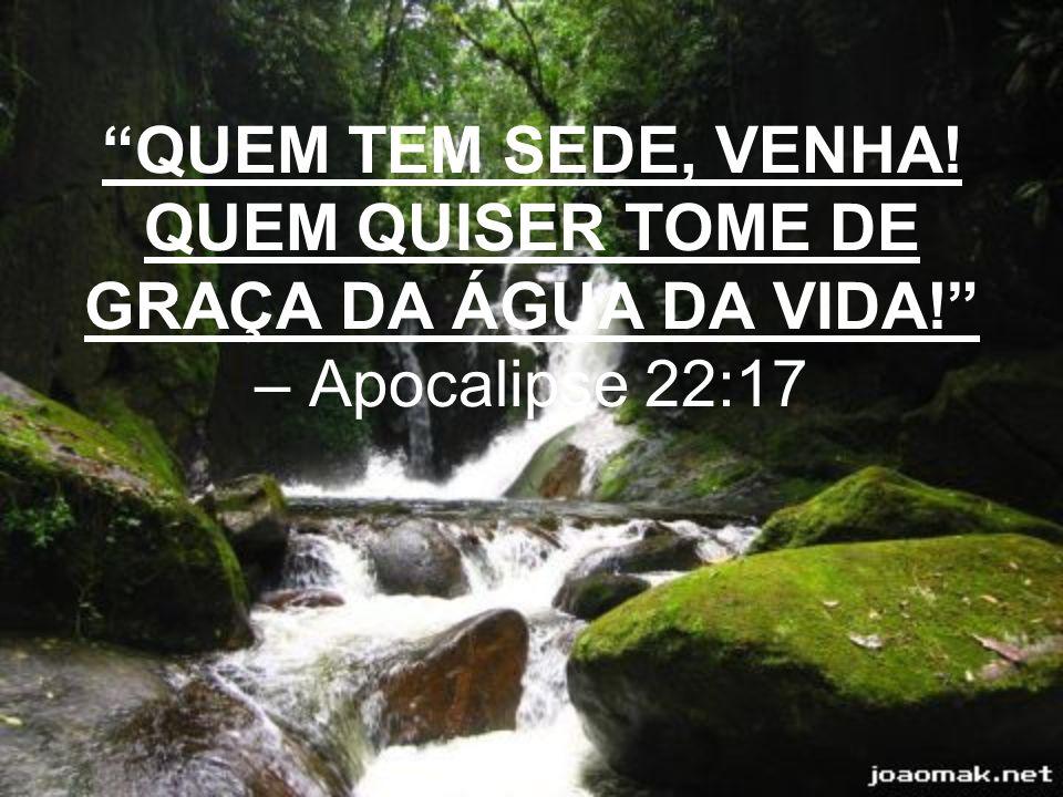 QUEM TEM SEDE, VENHA! QUEM QUISER TOME DE GRAÇA DA ÁGUA DA VIDA! – Apocalipse 22:17
