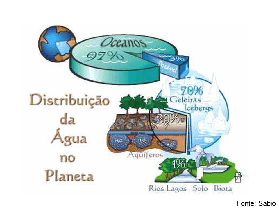 Chuva ácida A queima de carvão e de combustíveis fósseis e os poluentes industriais lançam dióxido de enxofre e de nitrogênio na atmosfera.