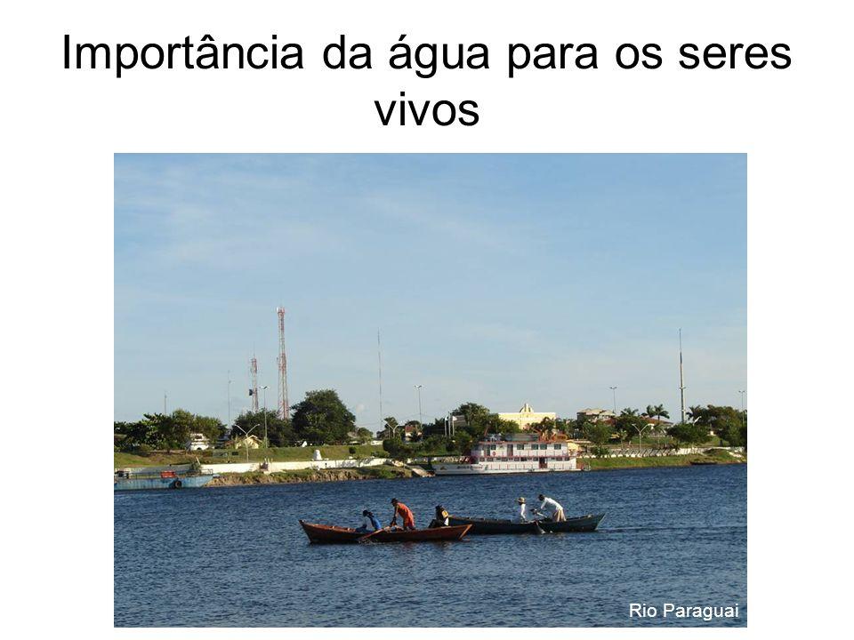Importância da água para os seres vivos Rio Paraguai