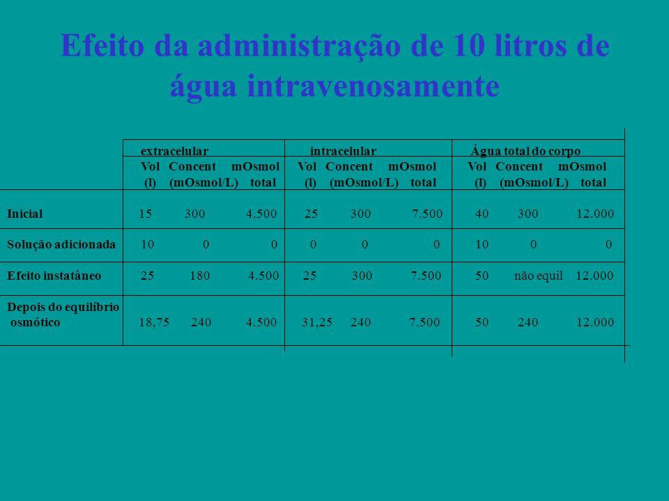 Efeito da administração de 10 litros de água intravenosamente extracelular intracelular Água total do corpo Vol Concent mOsmol Vol Concent mOsmol Vol