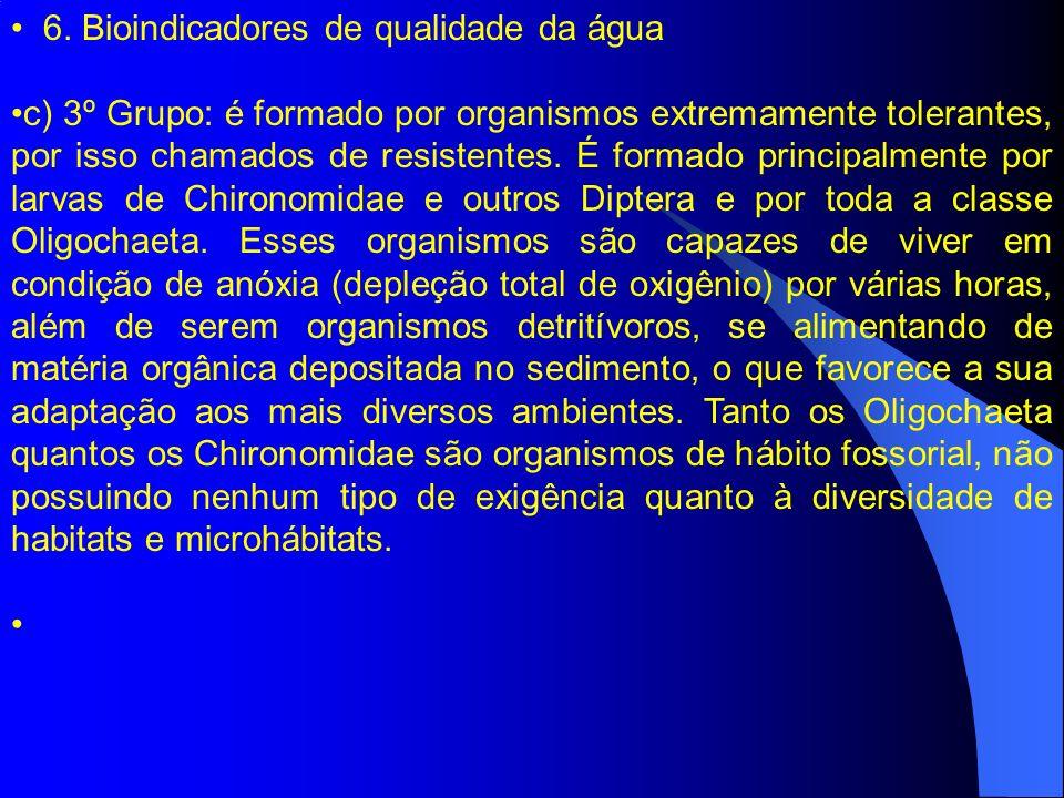 6. Bioindicadores de qualidade da água c) 3º Grupo: é formado por organismos extremamente tolerantes, por isso chamados de resistentes. É formado prin