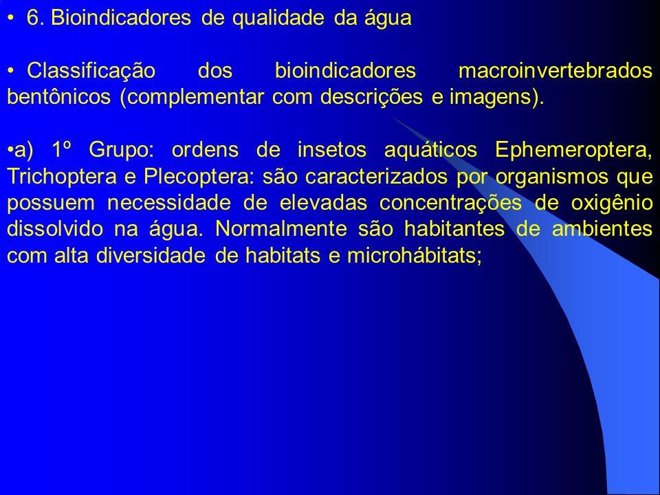 6. Bioindicadores de qualidade da água Classificação dos bioindicadores macroinvertebrados bentônicos (complementar com descrições e imagens). a) 1º G