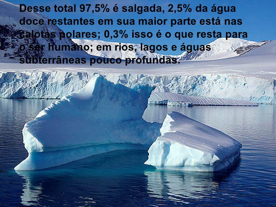 Desse total 97,5% é salgada, 2,5% da água doce restantes em sua maior parte está nas calotas polares; 0,3% isso é o que resta para o ser humano; em ri