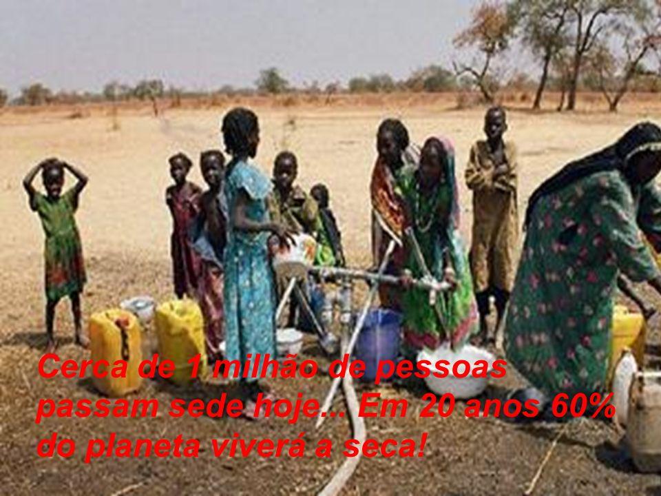 Cerca de 1 milhão de pessoas passam sede hoje... Em 20 anos 60% do planeta viverá a seca!