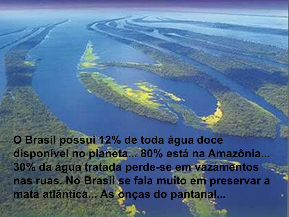 O Brasil possui 12% de toda água doce disponível no planeta... 80% está na Amazônia... 30% da água tratada perde-se em vazamentos nas ruas. No Brasil