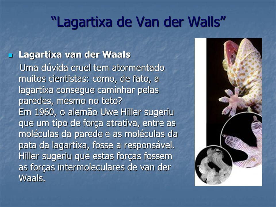 Lagartixa de Van der Walls Lagartixa van der Waals Lagartixa van der Waals Uma dúvida cruel tem atormentado muitos cientistas: como, de fato, a lagart