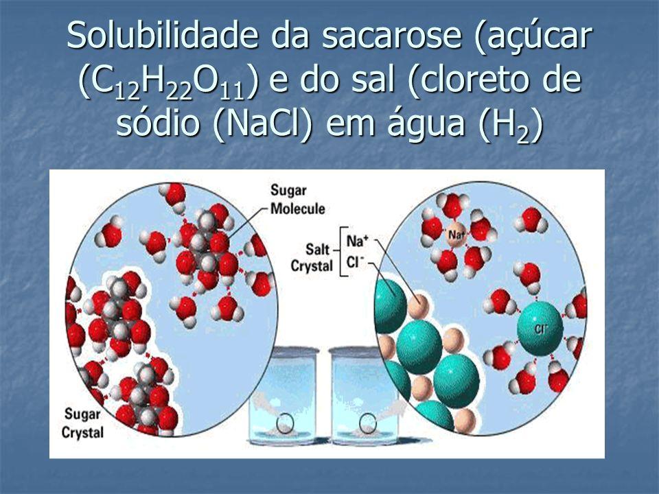Solubilidade da sacarose (açúcar (C 12 H 22 O 11 ) e do sal (cloreto de sódio (NaCl) em água (H 2 )