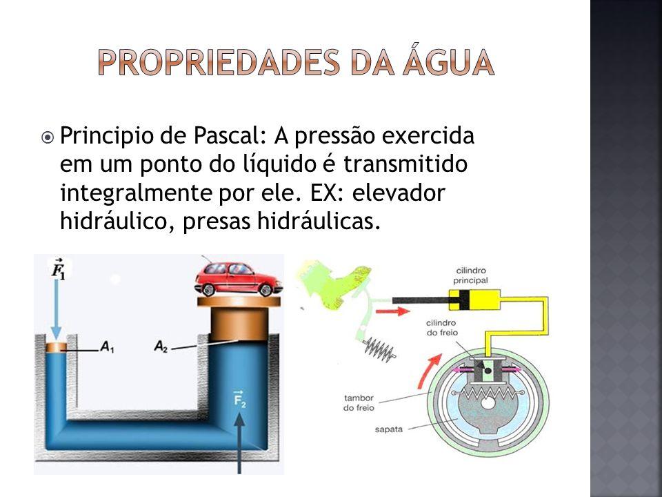 Principio de Pascal: A pressão exercida em um ponto do líquido é transmitido integralmente por ele. EX: elevador hidráulico, presas hidráulicas.