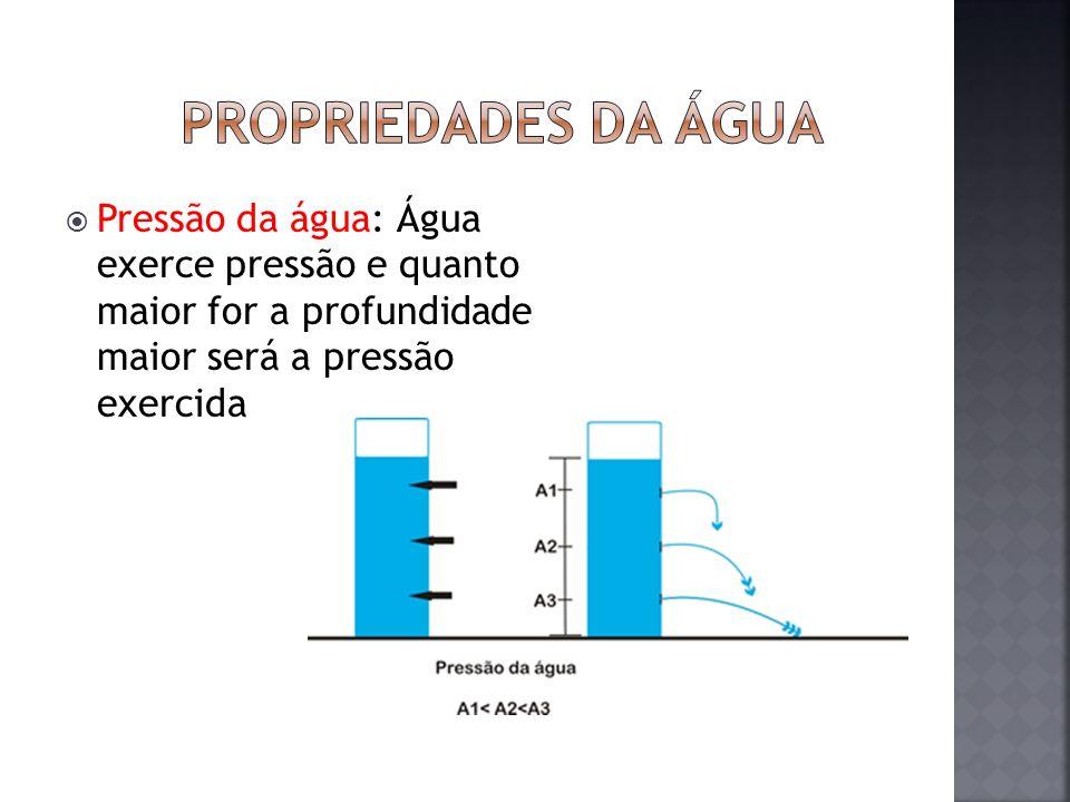 Pressão da água: Água exerce pressão e quanto maior for a profundidade maior será a pressão exercida